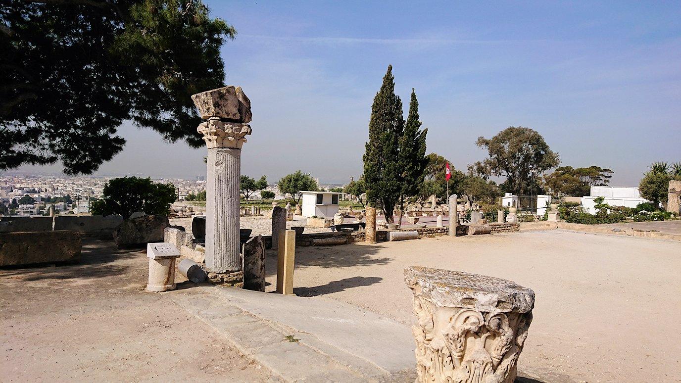 チュニジア:カルタゴ遺跡のビュルサの丘を散策する7
