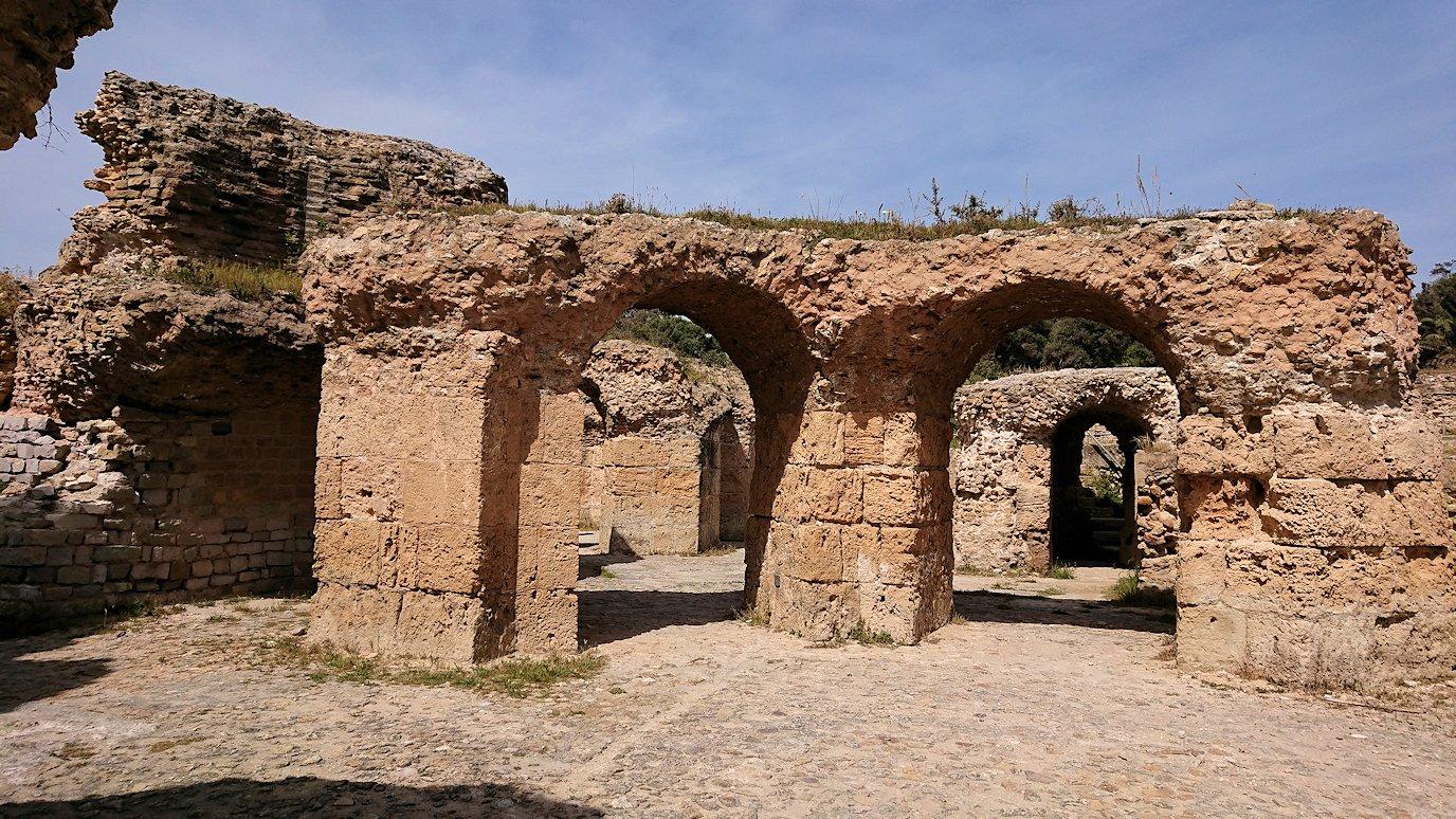 チュニジア:カルタゴ遺跡のアントニヌスの共同浴場内を散策