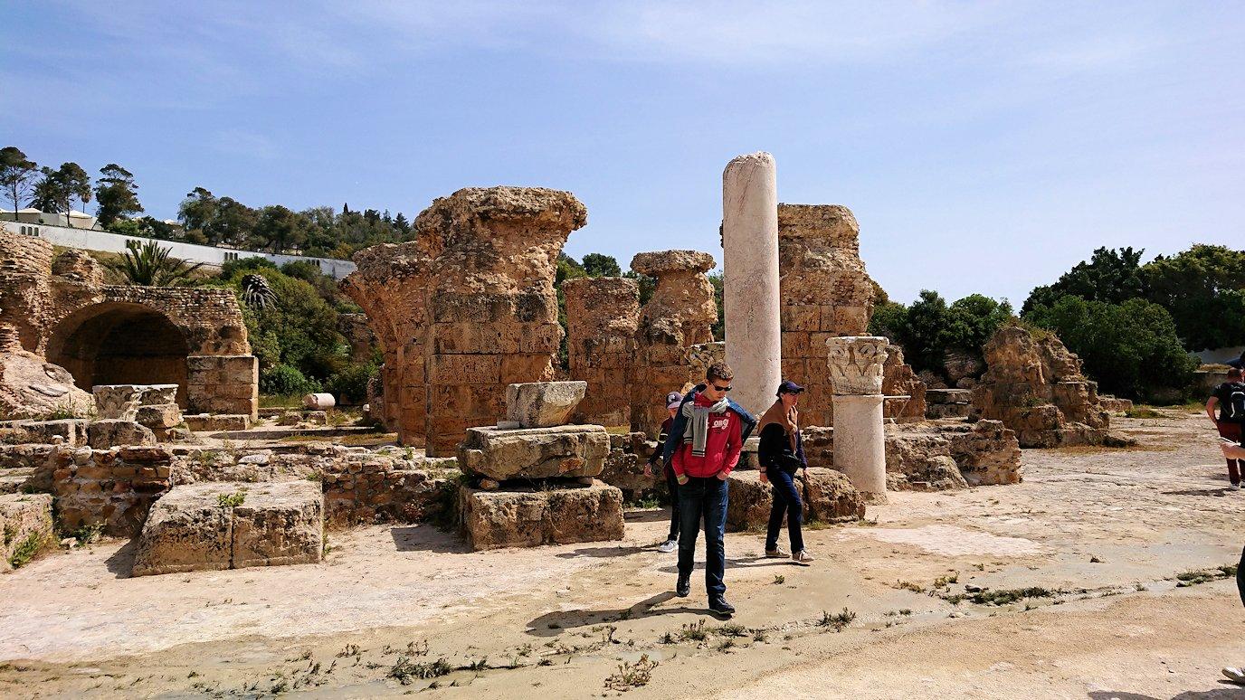 チュニジア:カルタゴ遺跡のアントニヌスの共同浴場内を散策1
