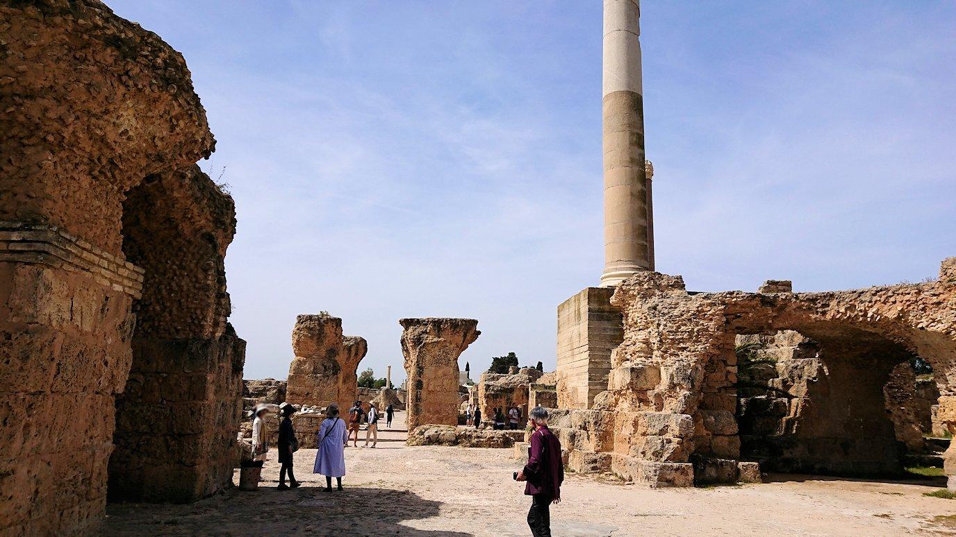チュニジア:カルタゴ遺跡のアントニヌスの共同浴場内を散策2