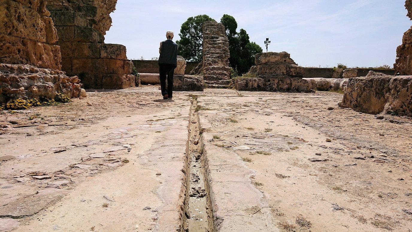 チュニジア:カルタゴ遺跡のアントニヌスの共同浴場内を散策3