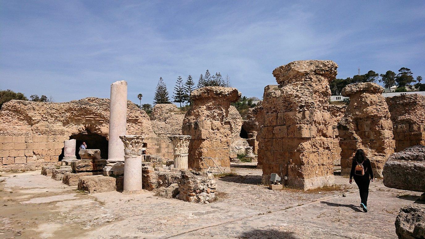チュニジア:カルタゴ遺跡のアントニヌスの共同浴場内を散策4