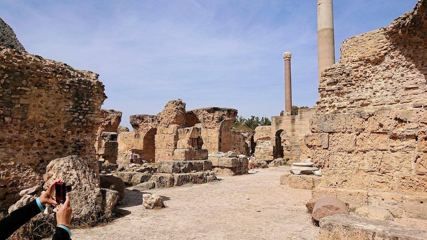 チュニジア:カルタゴ遺跡のアントニヌスの共同浴場内を散策7