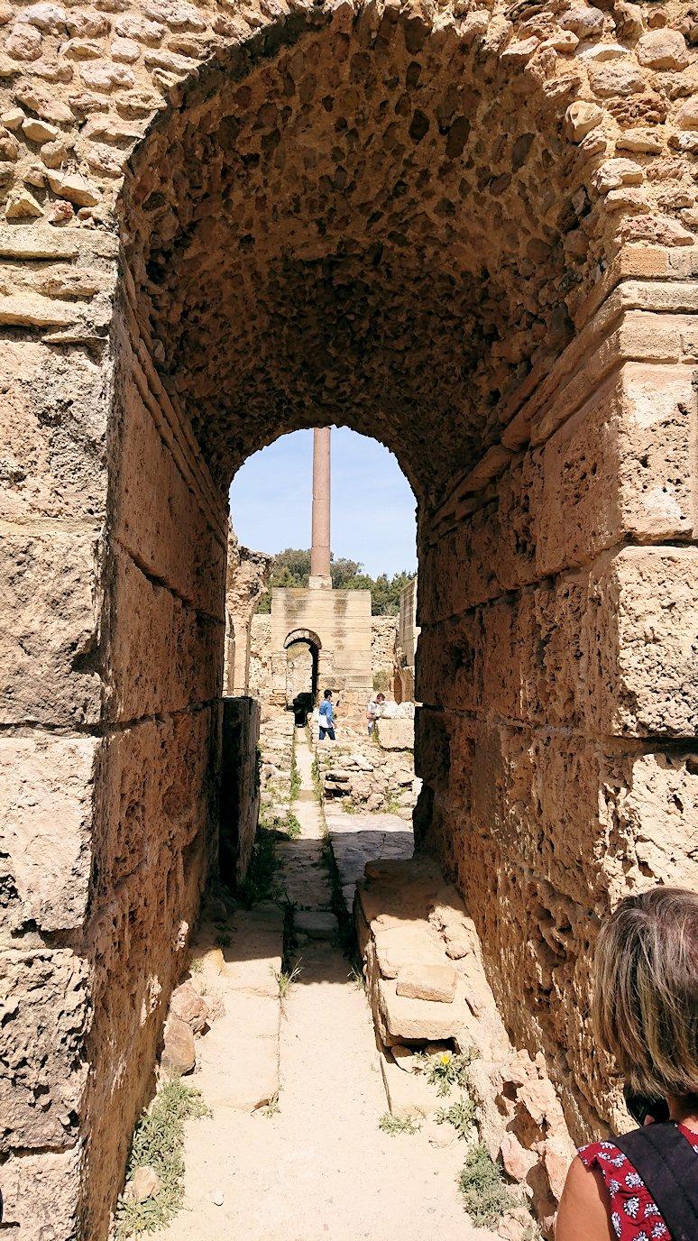 チュニジア:カルタゴ遺跡のアントニヌスの共同浴場内を散策8