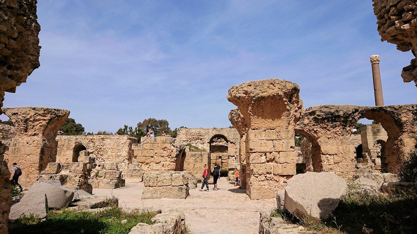チュニジア:カルタゴ遺跡のアントニヌスの共同浴場内を散策9