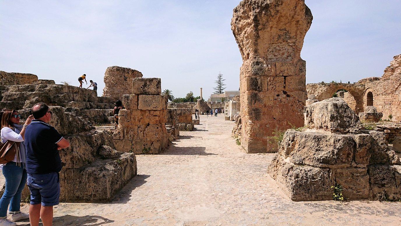 チュニジア:カルタゴ遺跡のアントニヌスの共同浴場内の散策は続く8