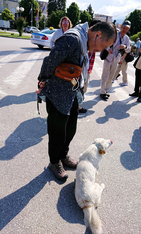 北マケドニアのオフリド湖遊覧終了しオフリドの街の港にて犬と戯れる