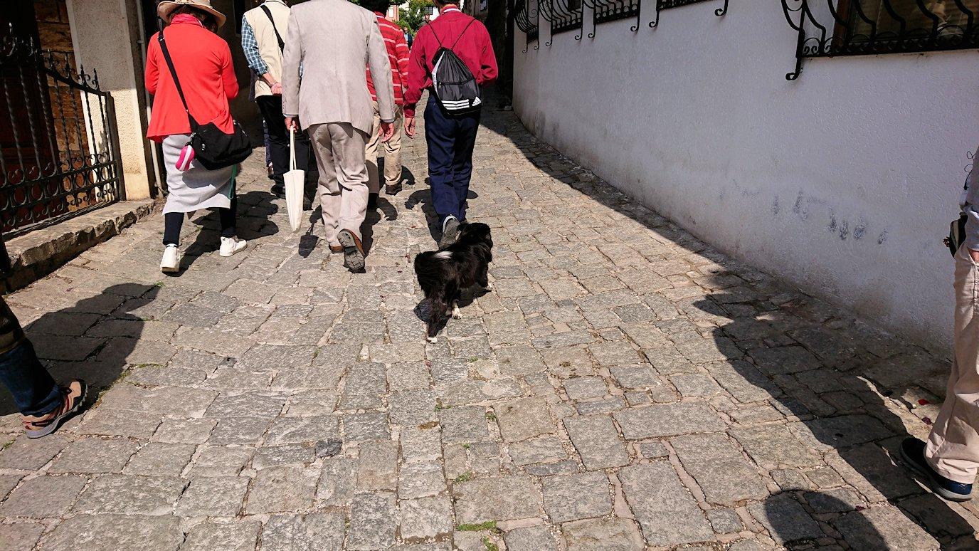 北マケドニアのオフリド湖遊覧終了しオフリドの街を歩いて聖ソフィア教会を目指す6