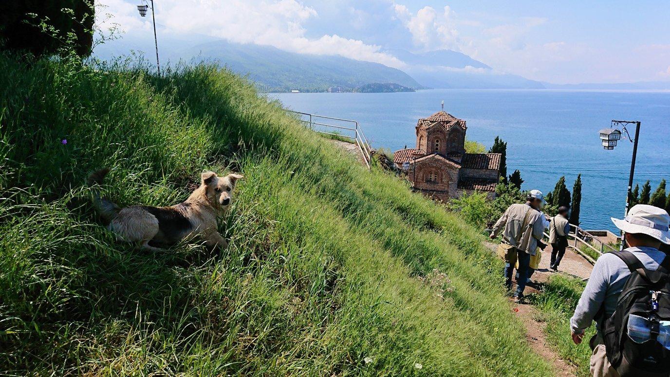 北マケドニアのオフリドで聖ヨハネ・カネオ教会付近を散策してみる9
