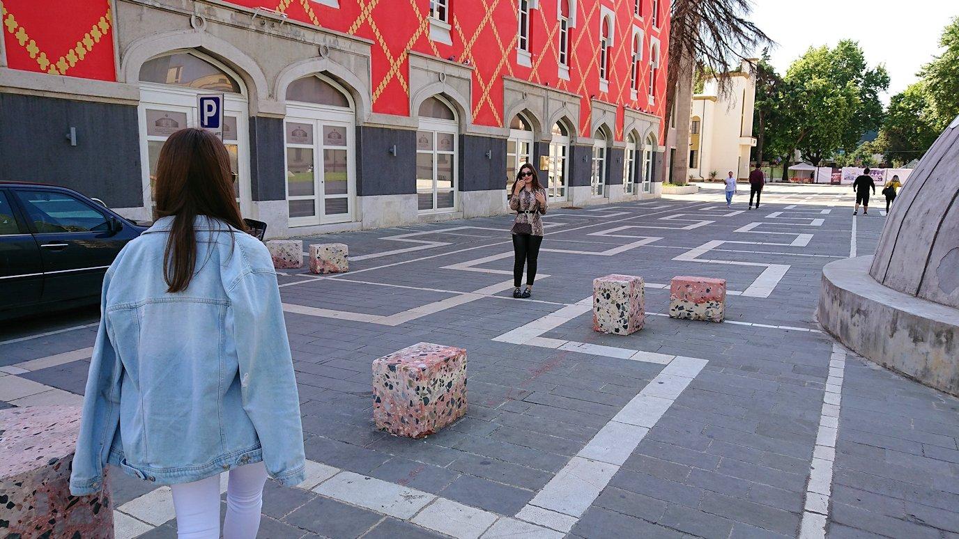 アルバニアで首都ティラナのスカンデルベグ広場で動物を見かける8