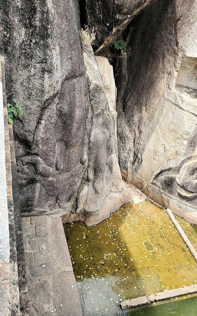 アヌラーダプラのイスルムニヤ精舎周囲に彫られているゾウさん