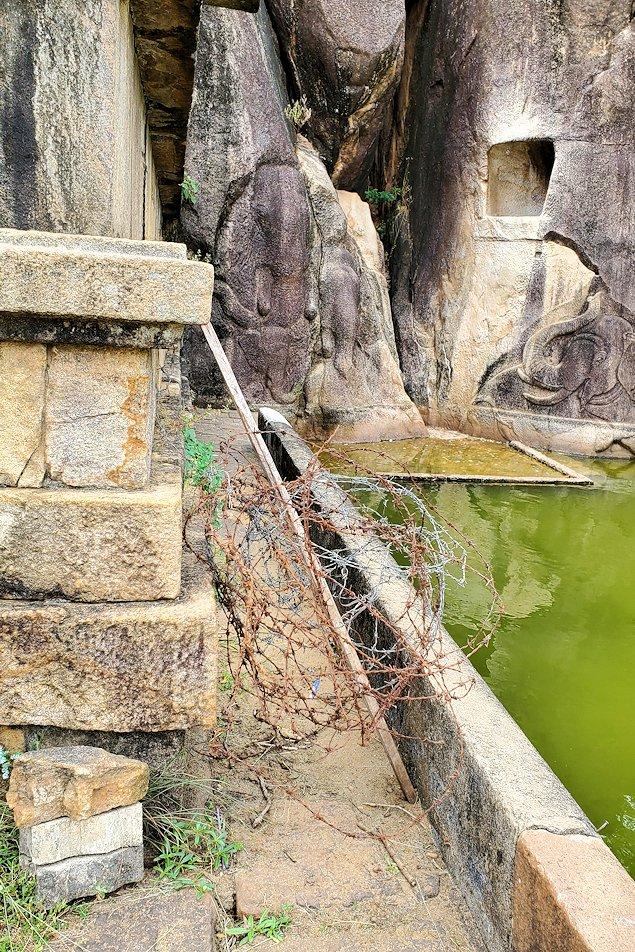 イスルムニヤ精舎正面右に彫られている、ゾウさんに繋がる通路には鉄条網が設置されている