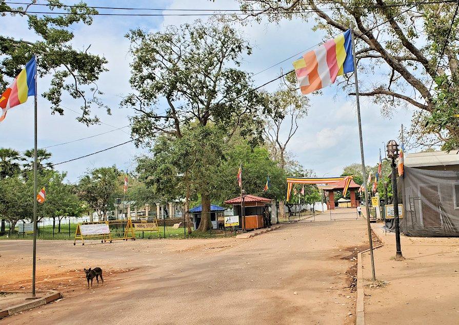 アヌラーダプラにあるスリー・マハー菩提樹が祀られる場所の敷地の入口