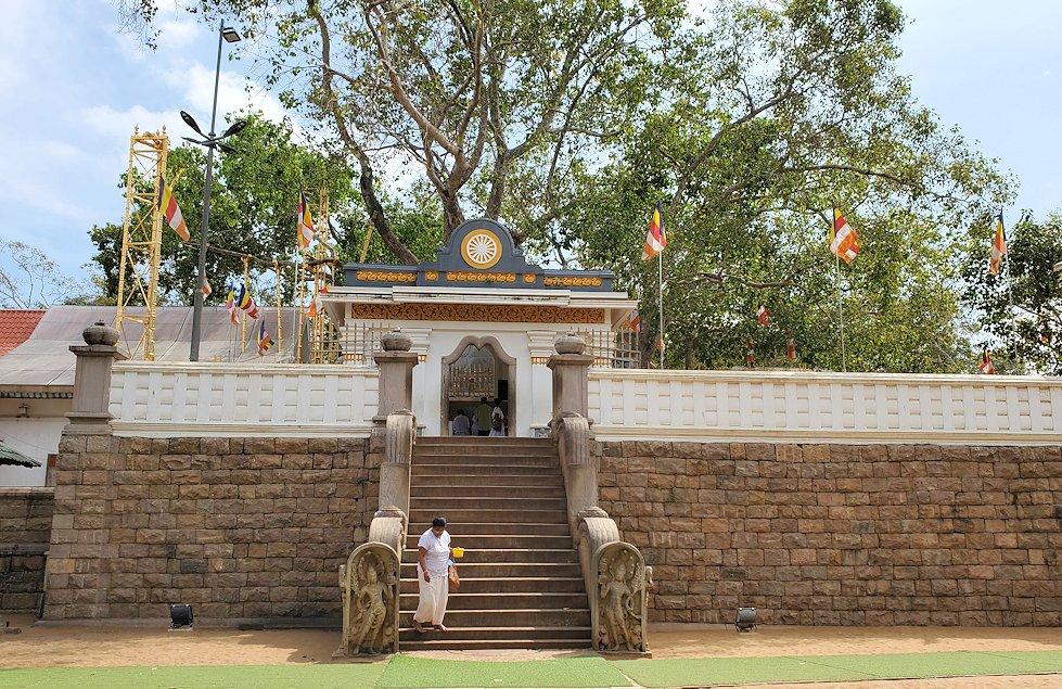 アヌラーダプラで祀られているスリー・マハー菩提樹
