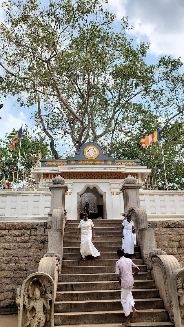 スリー・マハー菩提樹を祀る場所まで続く階段