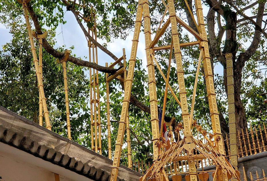 祀られているスリー・マハー菩提樹を見上げる-2