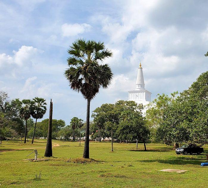 ルワンウェリ・サーヤ大塔に続く道を進む