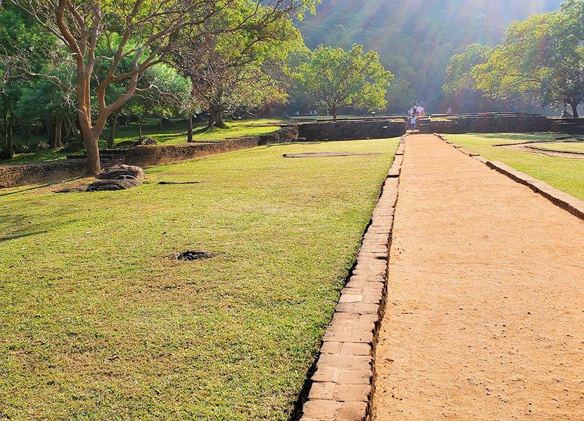 シギリヤロック敷地内の通路に植えられている芝生
