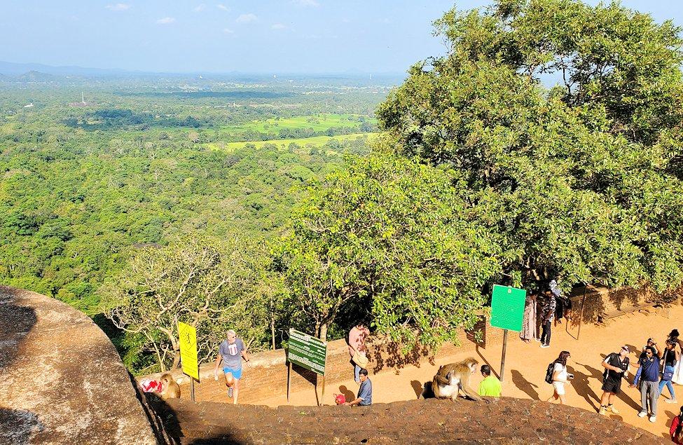 シギリヤロックの上にある「ライオンの入口」から登って行く途中の景色