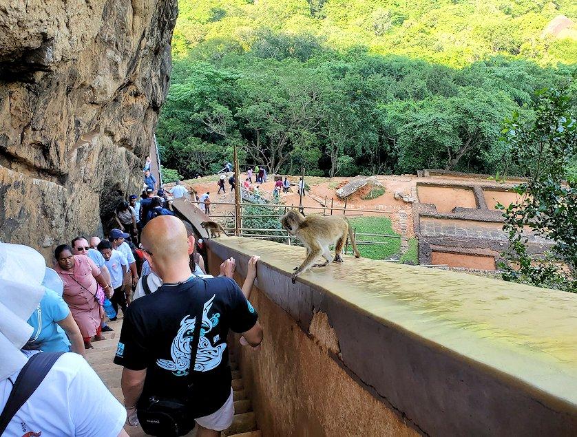 シギリヤロックのライオンの入口から下って行く人達