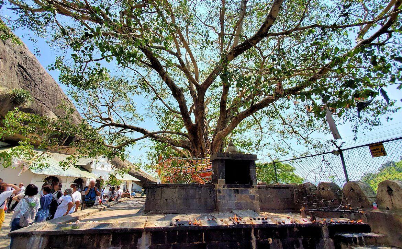 ダンブッラ寺院の見学を終えて、道を戻る途中に見えた景色-2
