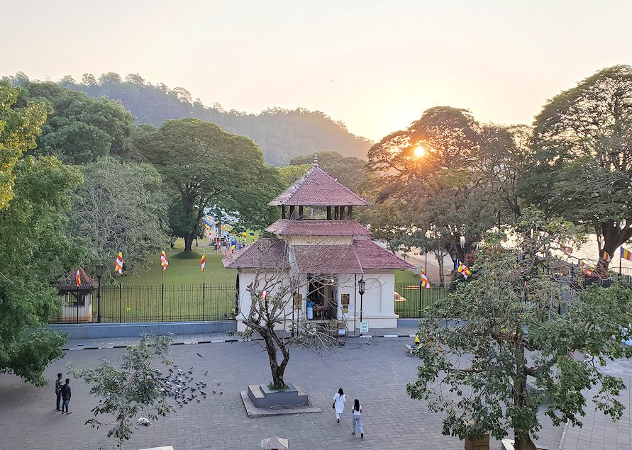 早朝の清々しい雰囲気の仏歯寺