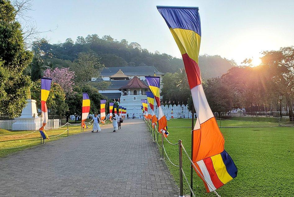 早朝の朝日が昇る様子を見つつ、仏歯寺へと進んで行く-3