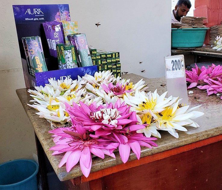 キャンディの仏歯寺で売られていたお供え用の蓮の花-2