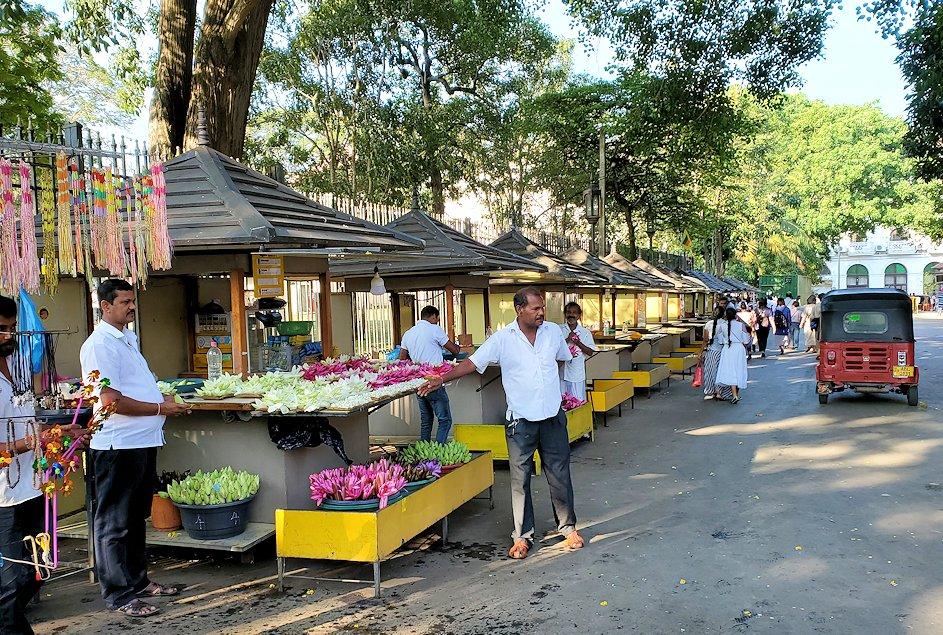キャンディの仏歯寺前で売られている、献花用の蓮の花