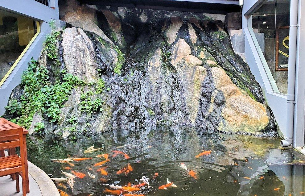 キャンディの街近くにある「ムレスナ・ティー」建物内にあった池