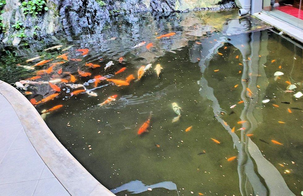 キャンディの街近くにある「ムレスナ・ティー」建物内にあった池-2