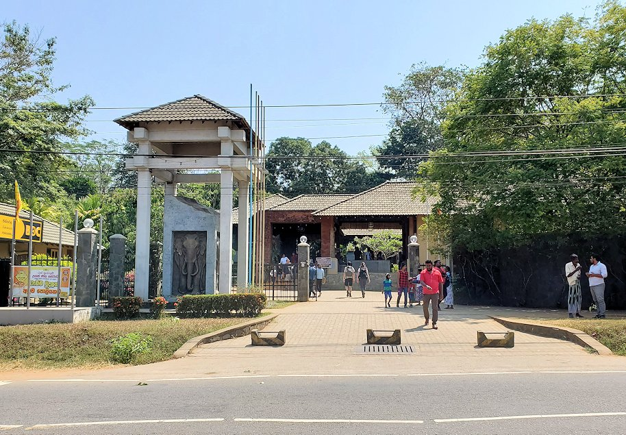ピンナワラのゾウの孤児院前に到着