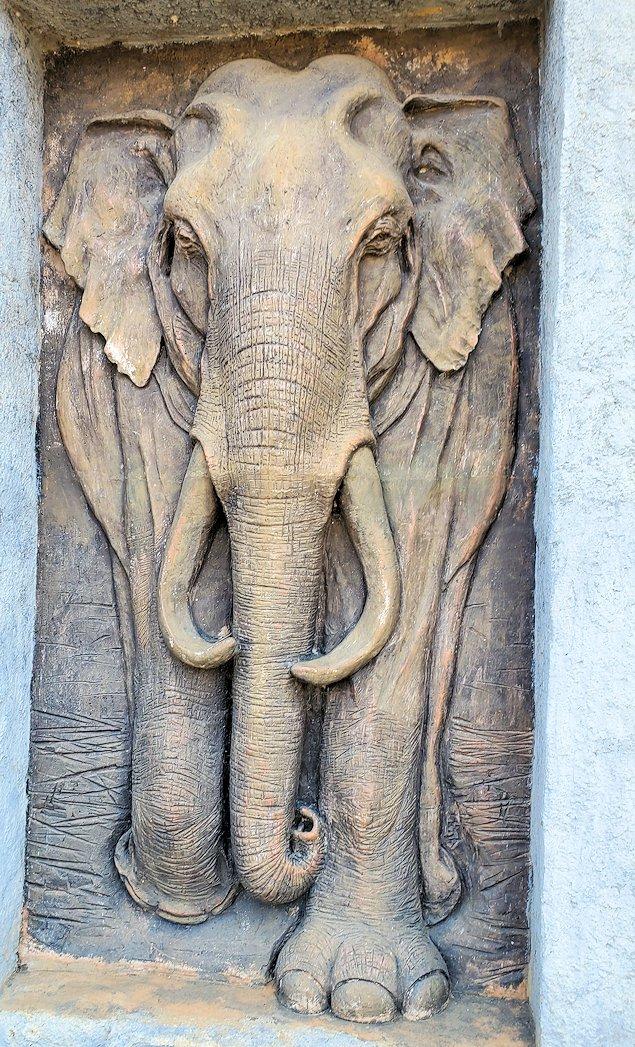 ピンナワラの「ゾウの孤児院」前にあったスリランカ・ゾウのプレート