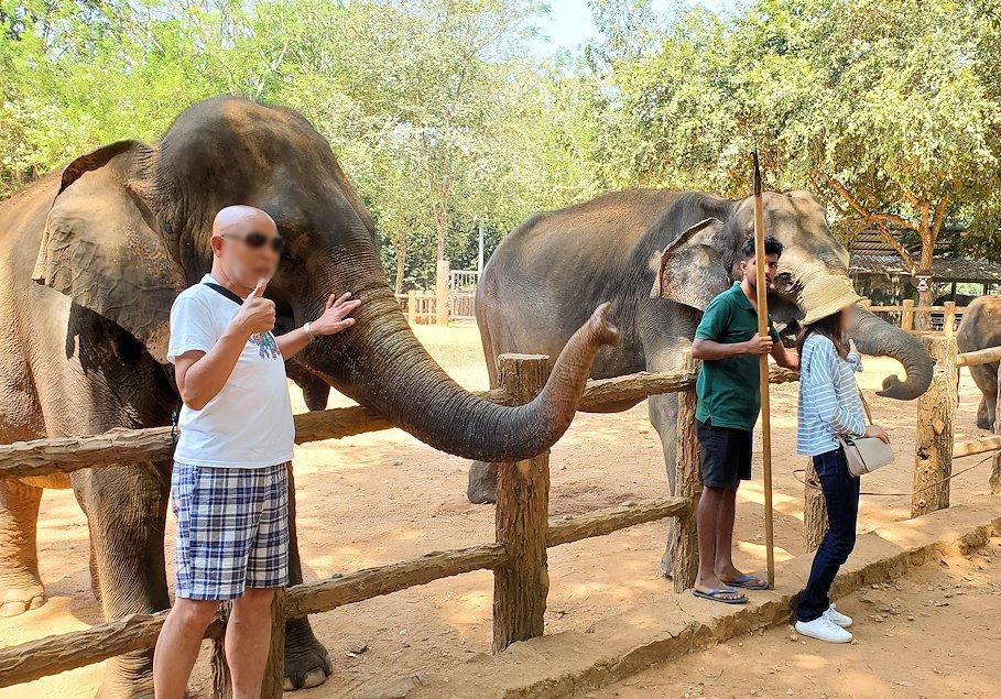ピンナワラの「ゾウの孤児院」で、間直に見えるゾウさんと記念撮影する人-2
