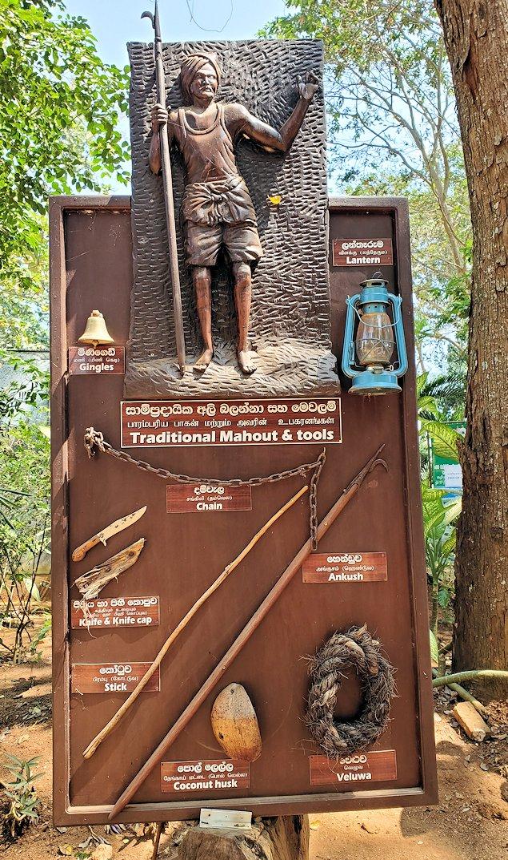 ピンナワラの「ゾウの孤児院」で、象使いのプレートと道具が展示されている