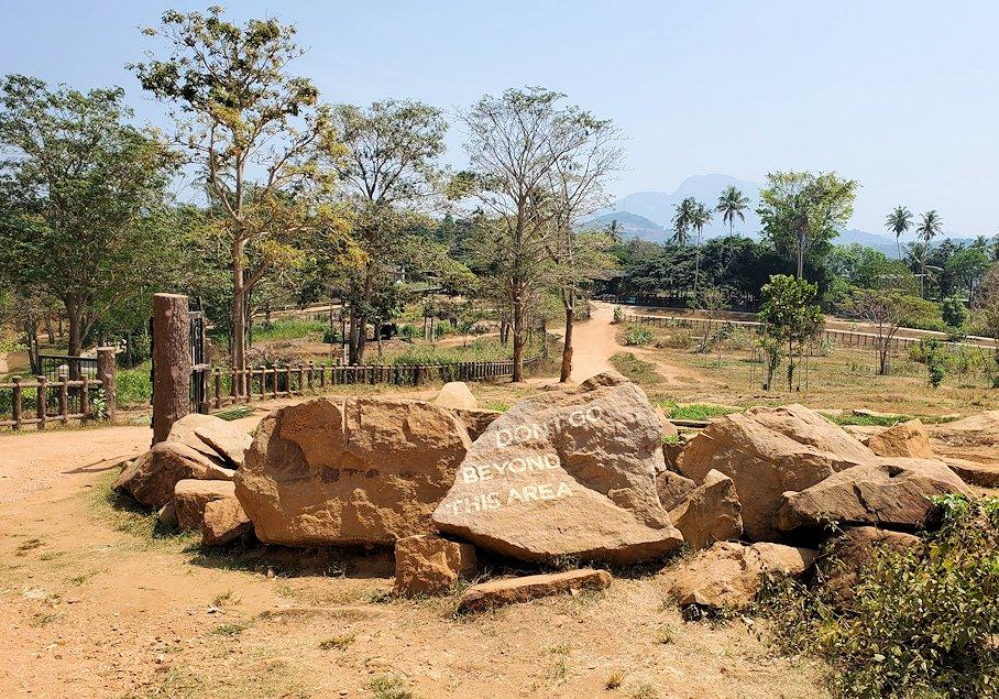 ピンナワラの「ゾウの孤児院」敷地内の景色
