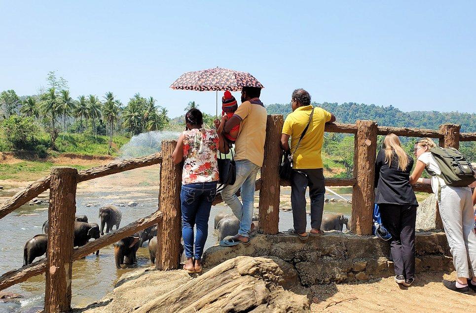 ピンナワラの街にある川沿いで水浴びする、孤児院のゾウさん達を眺める人達