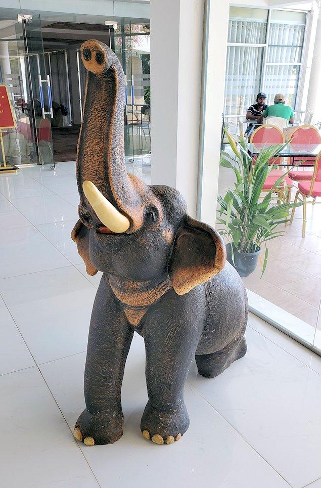 ホテル・エレファント・ベイに置かれていたゾウさんの像