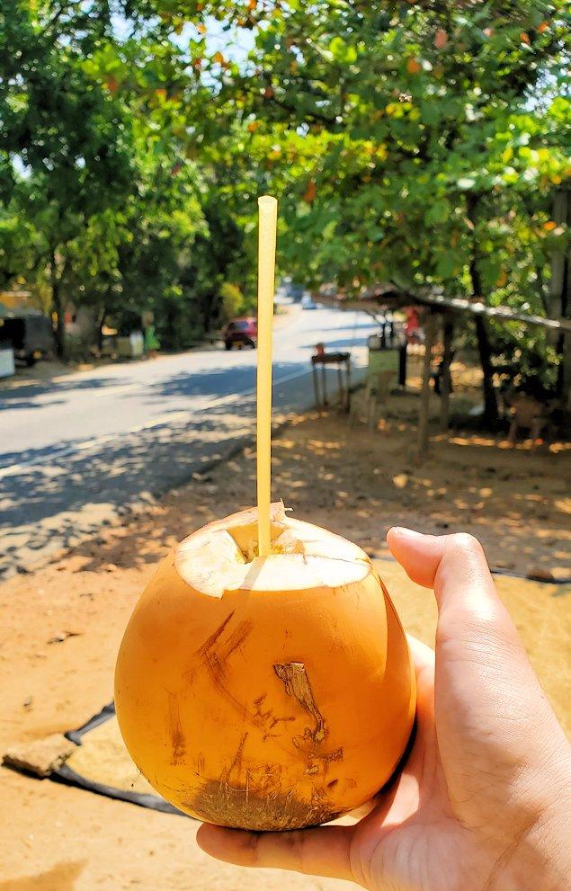 スリランカでカシューナッツ名産の地方のお店の横で購入したココナッツミルク