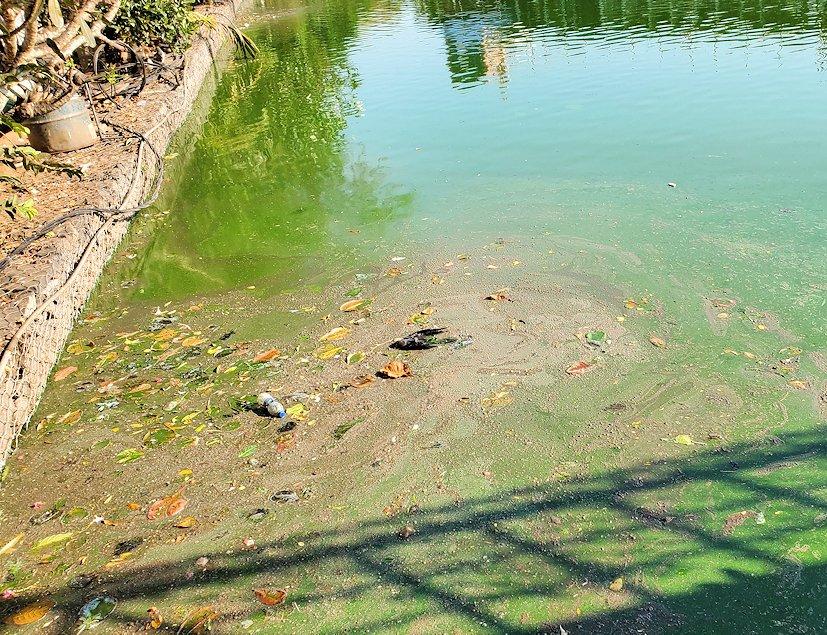シーマ・マラカヤ寺院周辺のベイラ湖は、ゴミが浮いて汚れている