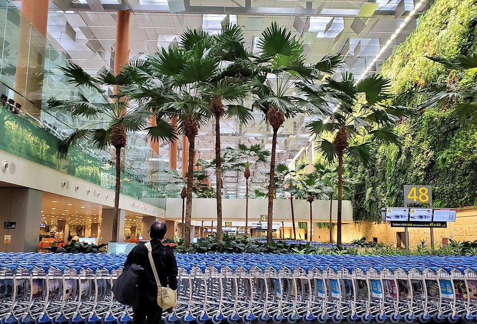 チャンギ空港の無料ツアーに参加し、空港を出発-2