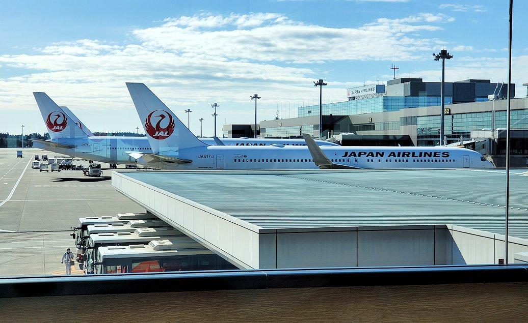 成田国際空港内のJALの飛行機