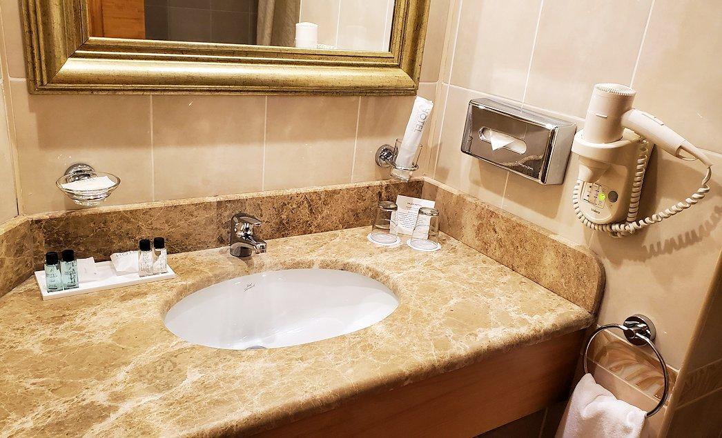 モスクワにある「ミランホテル」の部屋内の洗面所