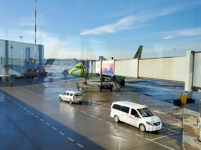 サンクトペテルブルグのプルコヴォ空港内の飛行機