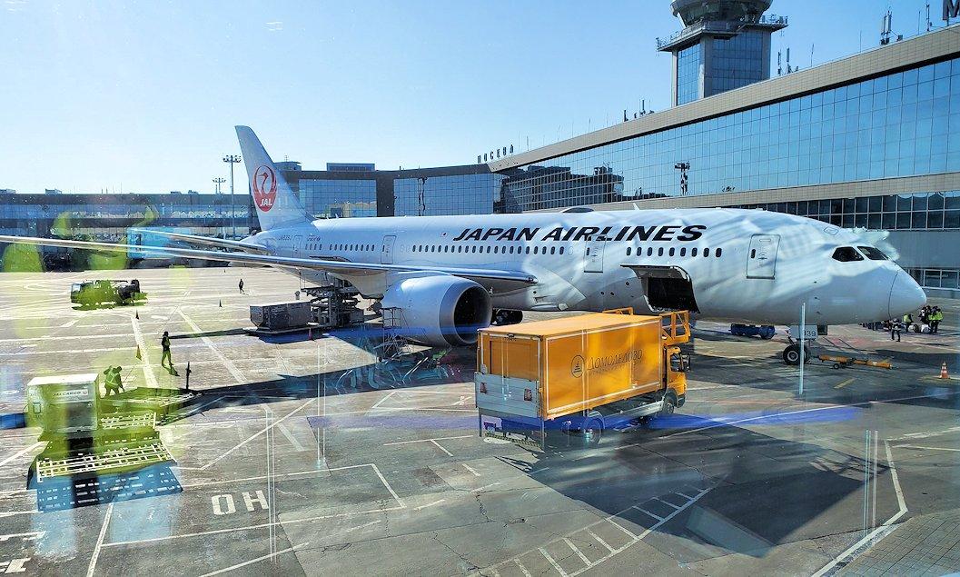 モスクワ空港に待機しているJALの飛行機
