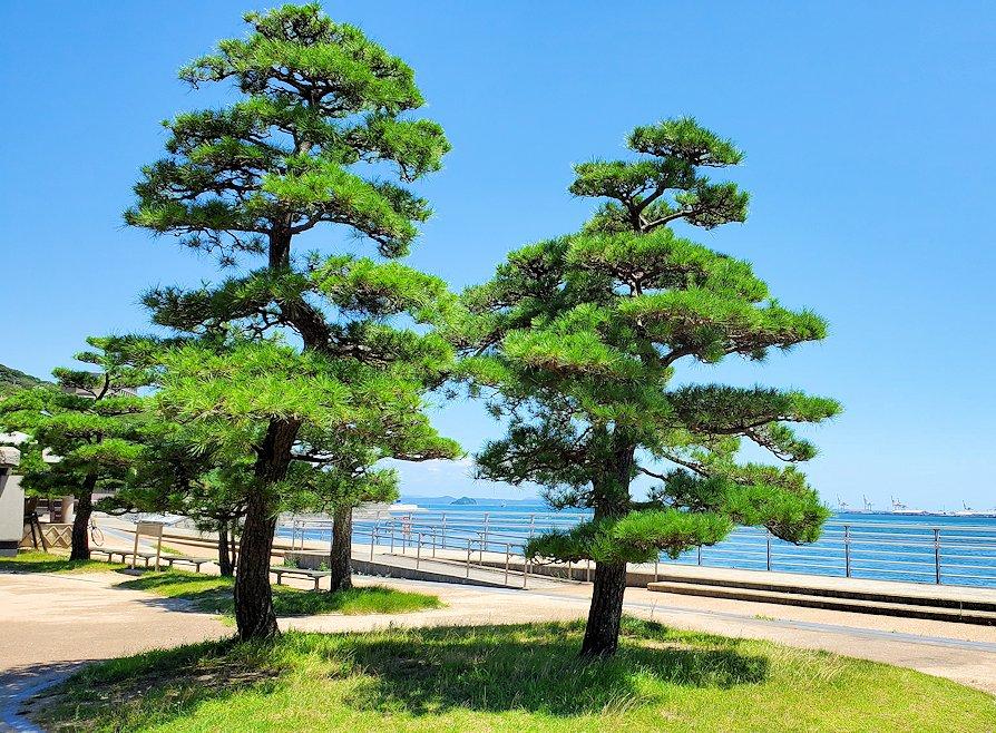 関門海峡の下関側から関門橋や九州側を眺める。そこにはこのように松などが植えられている